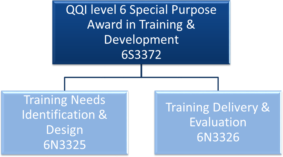 Train The Trainer QQI Level 6 Training